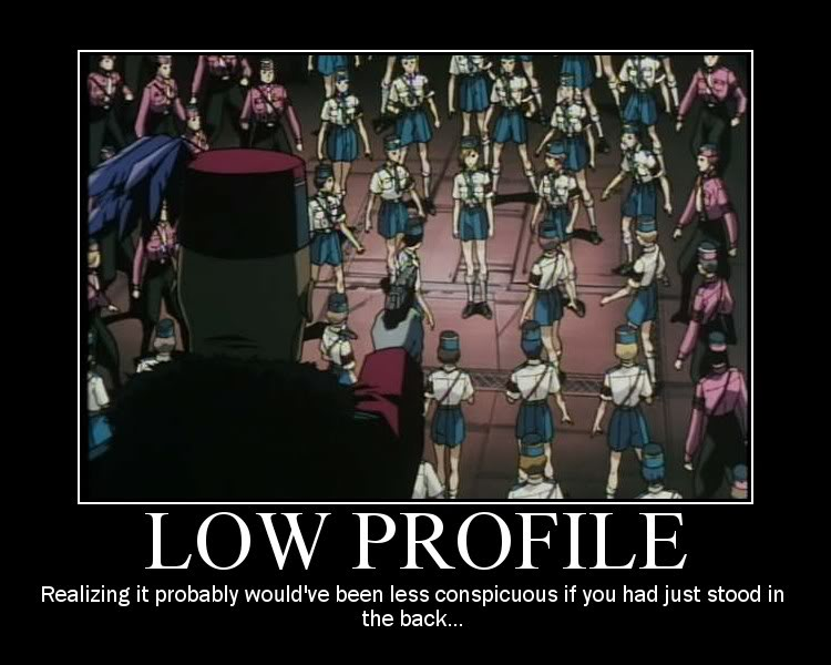 funny-lowprofile