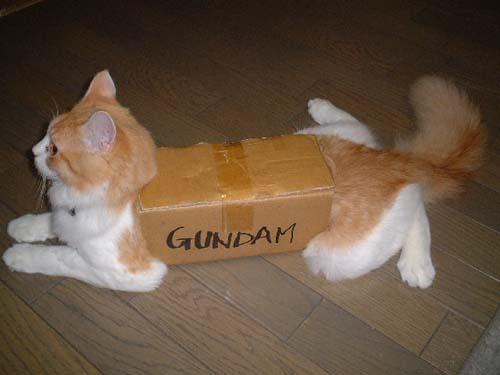 Gundam Kitty!